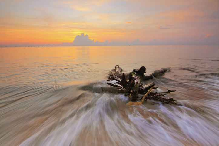 beach clouds dawn driftwood