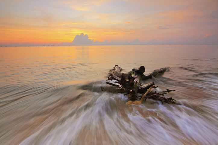 beach clouds dawn driftwood